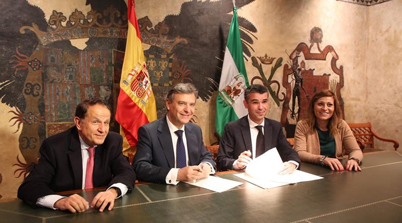 Acuerdo Ayuntamiento Marbella Endesa