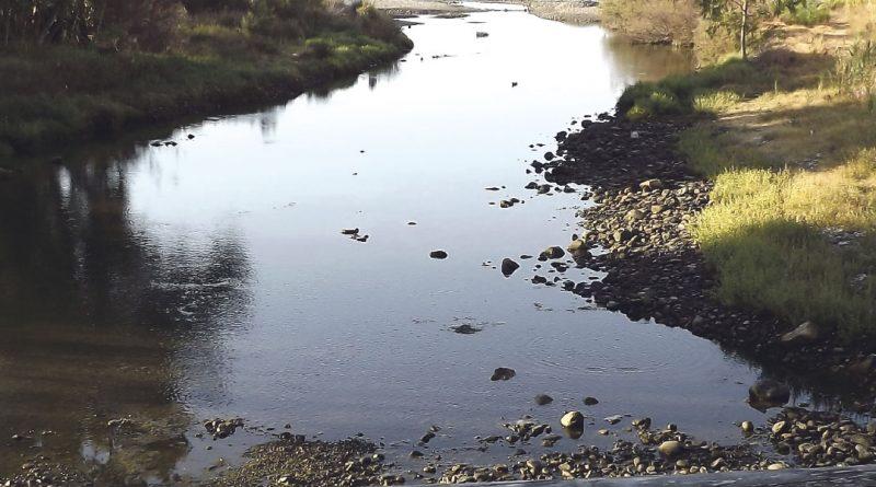 Guerra de vídeos entre el Ayuntamiento y los ecologistas