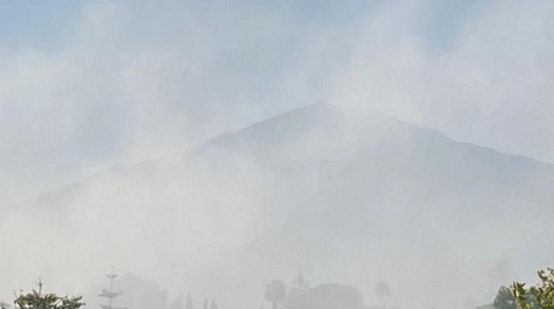Incendio San Pedro